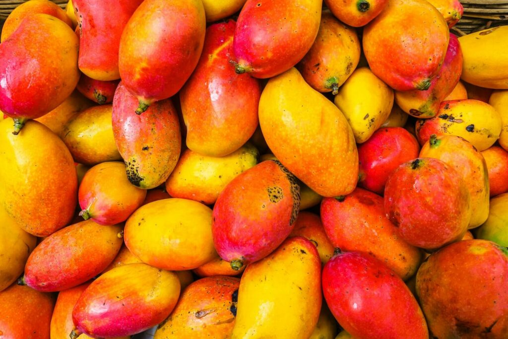 how to ripen mangoes - how to tell if a mango is ripe